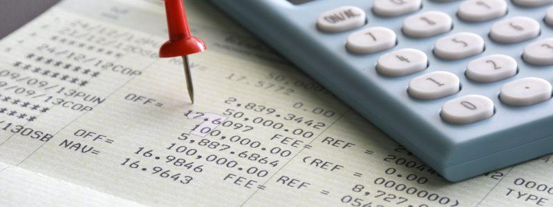 Personal Edition Payroll Sheet & Calculator